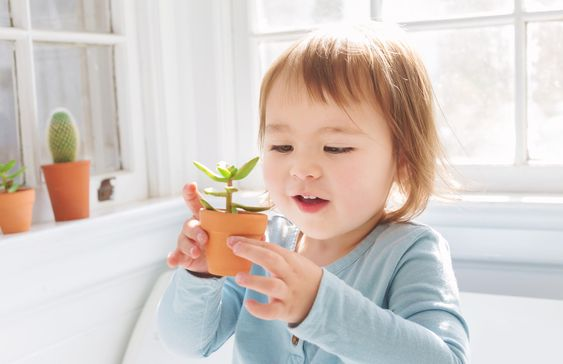 Child holding a small plant