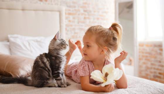 National Pet Month: Should your child sleep with a pet in their room?